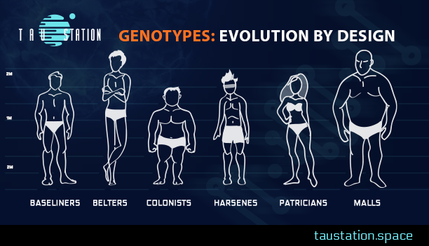 Genotypes: Evolution by Design