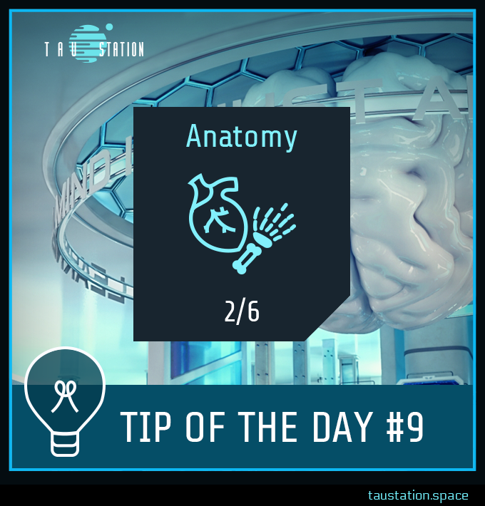 University Courses: Anatomy icon