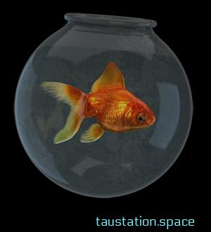 A goldfish bowl with a tiny, but shiny goldfish inside.